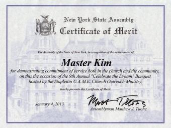 NY State Assembly – Master Kim